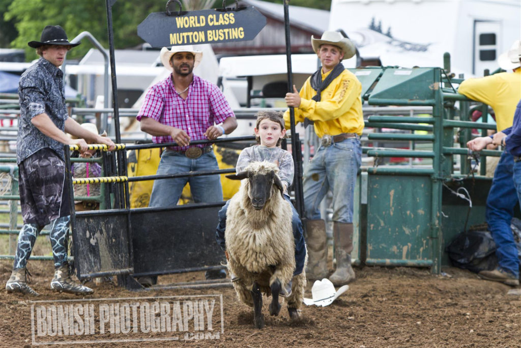 Rock Bottom, Mutton Busting, Bonish Photo, Rodeo