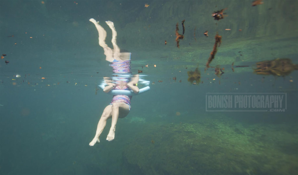 Underwater Photography, Bonish Photo, Manatee Springs