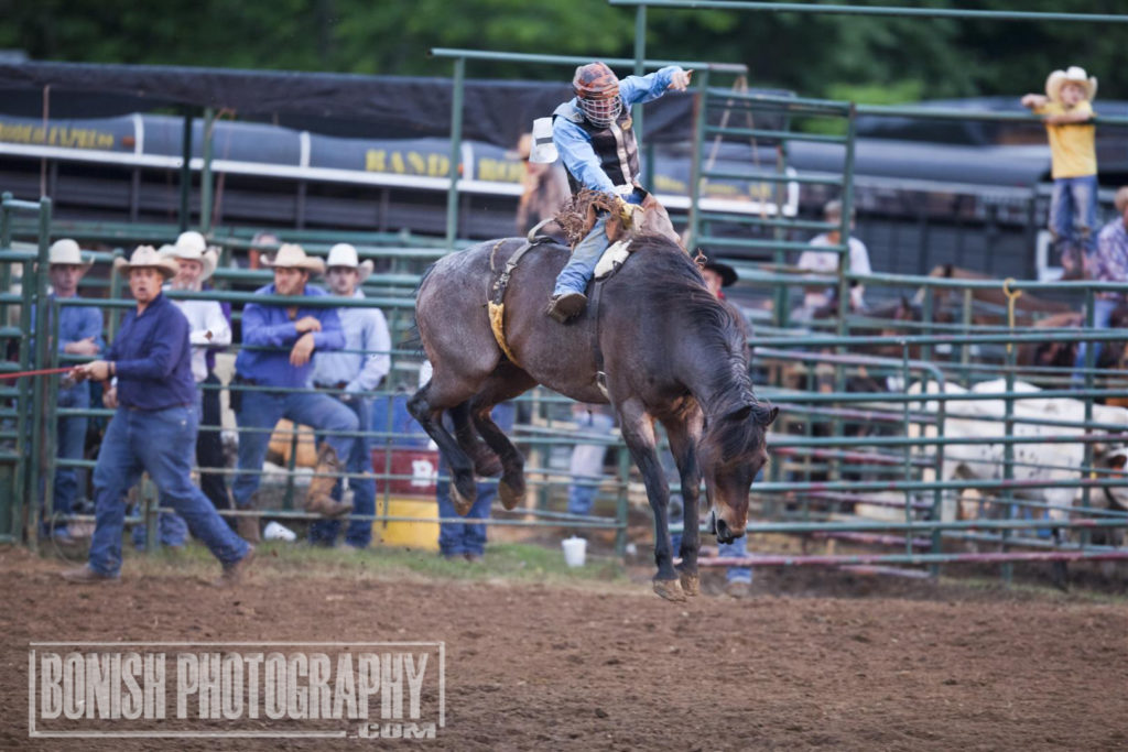 Bucking Bronc, Bronc Riding, Rodeo, Bonish Photo, Rock Bottom