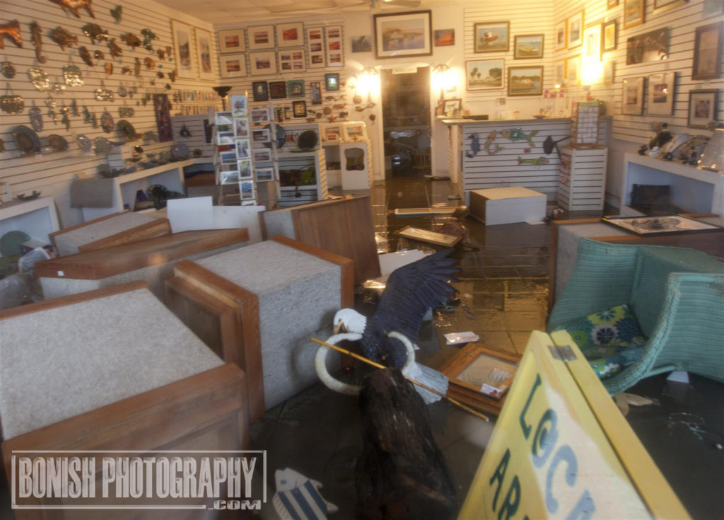 Island Arts, Cedar Key, Hurricane Hermain