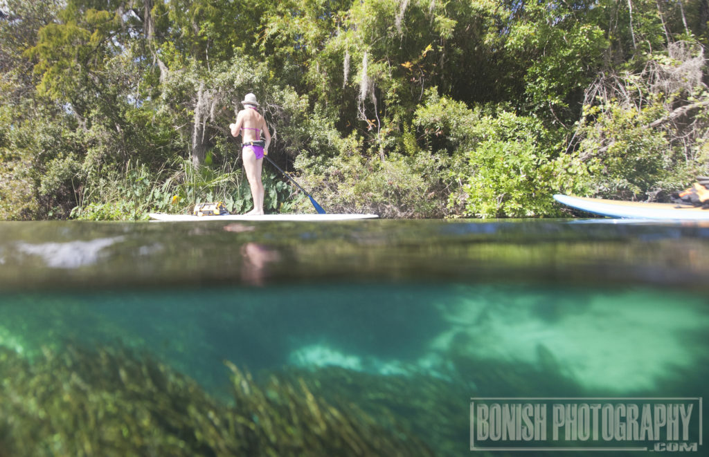 Stand Up Paddle, Weekie Wachee River, Bonish Photo