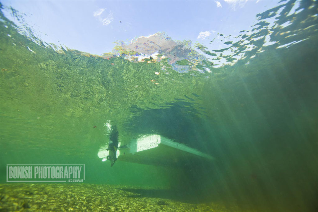 Underwater Photography, Suwannee River, Bonish Photo