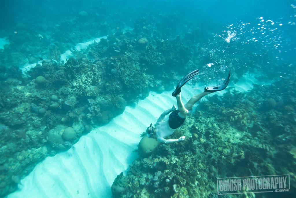 Heath Davis, Snorkeling, Bonish Photo, Every Miles A memory, Underwater Photo
