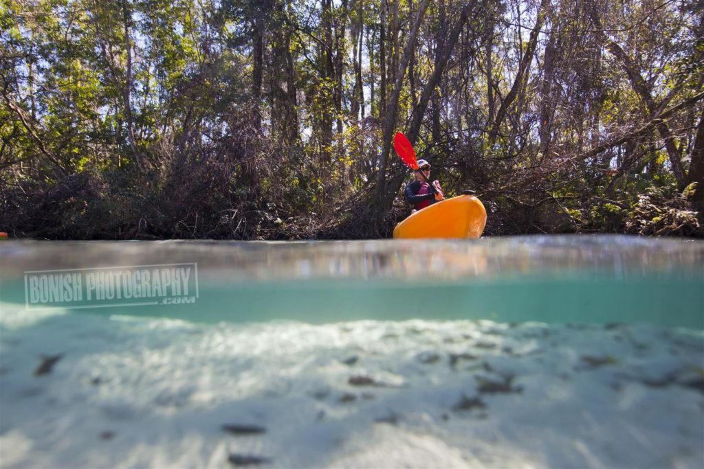 Cindy Bonish, Every Miles A Memory, Bonish Photo, Weeki Wachee River, Underwater Photo