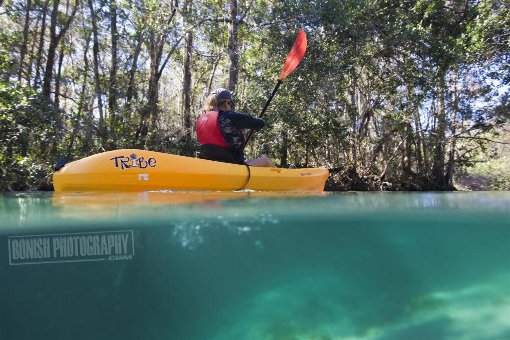 Split Shot, Underwater Photo, Paddling, Weeki Wachee River, Bonish Photo, Every Miles A Memory