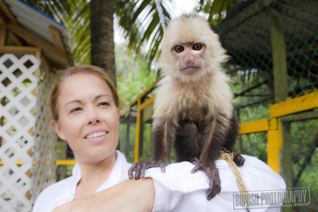 Monkey, JOlie Davis, Every Miles A Memory, Bonish Photo,