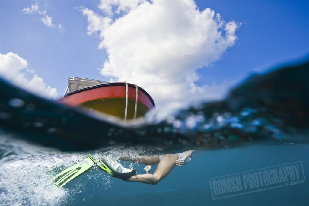 Snorkeling Roatan, Bonish Photo, Every Miles A Memory, Underwater Photo