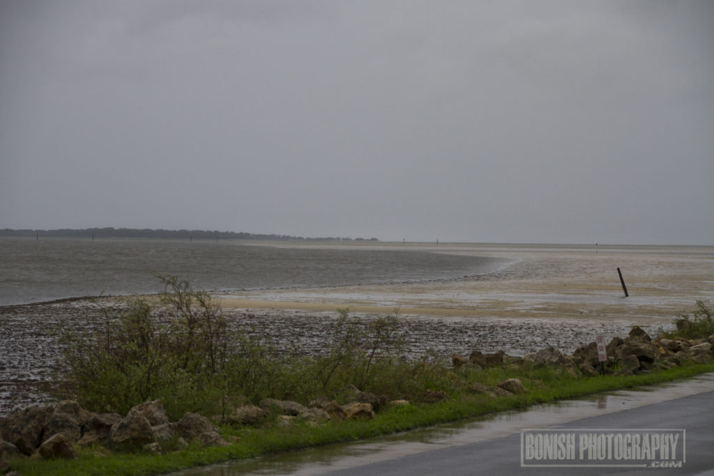 Hurricane Irma, Lowtide, Bonish Photo, Cedar Key